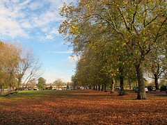Plumstead Common (S Clark) Tags: plumstead plumsteadcommon johndemorgan 1878plumsteadcommonact southeastlondon southeastlondongreenchain greenchain londonist london londonparks autumn autumncolour timeout canon canonpowershotg12