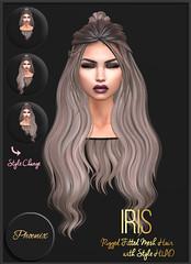 Phoenix Iris (Lilly Herberg :::Phoenix::: Hair) Tags: fameshed secondlife sl hair phoenix phoenixhair lilly herberg mesh hairstyle