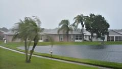 O1K_9349 (68photobug) Tags: 68photobug nikon d7000 nikkor 28300mm lakeland polkcounty florida usa outmybackdoor hurricane irma storm damage