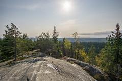 Koli - Finland (Sami Niemeläinen (instagram: santtujns)) Tags: koli suomi finland lieksa pielinen kansallispuisto national park luonto nature landscape maisema syksy autumm metsä forest finlandia hiking trekking kansallismaisema