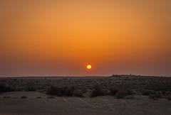 Rajasthan - Jaisalmer - Desert Safari with Camels-63