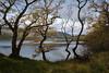 Before I left Loch Chon (Uillihans Dias) Tags: lochard scotland lanscape uk britain lake loch