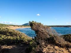 Porto Ferro (renmas57) Tags: alghero sardegna portoferro island sea sun beach mare panorama landscape