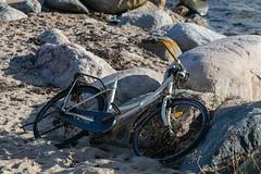 DSC_1077 (Birdiebirdbrain) Tags: nature naturephotography naturfoto natur fredericia denmark danmark nikon nikond3300 bike beach østerstrand bicycle tokina tokina100mmf28