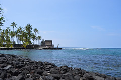 (*~Dharmainfrisco~*) Tags: dharmainfrisco dharma hawaii big island kona mission church cemetery ocean beach waterfront palm trees sea usa 2015 travel trip