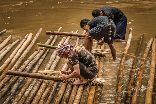 Building a bamboo raft