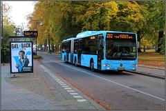 Syntus 5272 - Apeldoorn (Jonathan Blokzijl) Tags: apeldoorn oranjepark regentesselaan bus syntus citaro mercedes streekbus herfst kleuren 5272