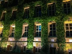 The Ivy of Princeton University (Tim Loesch) Tags: nightshot ivy nj newjersey princeton mercercounty