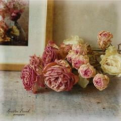 Roses (Kerstin Frank art) Tags: texture kerstinfranktexture roses flowers stilllife floer bouquet vase kerstinfrankart