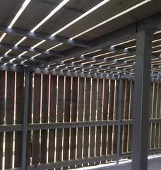 Shelter-Wooden-Clad-Interior-1