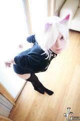 .:Cat Girl:. (JustGeraldMedia) Tags: justgeraldmedia petplay pet play catgirl cat ears cute thigh highs sweater stockings