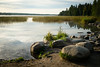 Rocks and Waters 20170928-DSC03503 (Rocks and Waters) Tags: green lake itasca lakeitasca park stateparkitascastatepark boring sunrise water rocks trees sony loxia235 a7rii loxia zeiss