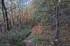 DSC01878 (cassolclaudio) Tags: montagna ferrata rio secco trento