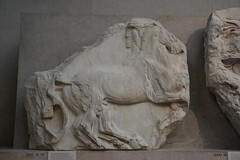 DSC_0579 (Andy961) Tags: uk england london britishmuseum museums elginmarbles greek sculpture antiquties