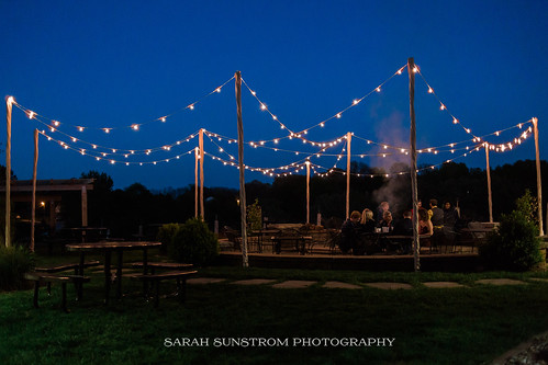 """Outdoor Bistro Lighting at Cedar Ridge Winery by Unique Events • <a style=""""font-size:0.8em;"""" href=""""http://www.flickr.com/photos/81396050@N06/37758921461/"""" target=""""_blank"""">View on Flickr</a>"""