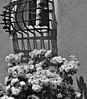 Germany, Kloster Lorch, 75572/9065 (roba66) Tags: germany deutschland reisen travel explore voyages roba66 badenwürttemberg stadt city town building architektur architecture arquitetura kulturdenkmal monument bau fassade façade platz places urban historie history historic historical geschichte europa cityscape haus house häuser lorch santuarios abbey monastery kloster blackandwhite negro blancoynegro fenster window blumenfenster