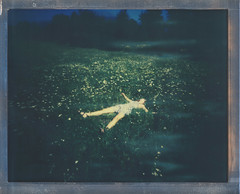 8x10 The Smell of Autumn in the Air (sycamoretrees) Tags: 8x10 8x10pinhole analog autumn color8x10 color8x10201510 film flowers girl grass impossible instantfilm integralfilm largeformat marianrainerharbach polaroid woman