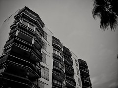 2017-10-27_04-51-02 (georgekells) Tags: architecture angles perspective tree leaves foilage building apartments blackandwhite monochrome contrast evening structure handheld uncropped salou spain travel
