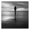 Immersion / Another Place, Crosby, Merseyside (Andrew James Howe) Tags: andrewhowe anotherplace antonygormley blackandwhite beech clouds crosby dusk england fineart horizon iron light landscape liverpool longexposure mono merseyside square sky