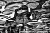 H-w Leines‎ (c o n c e p t) Tags: art artist abstraction background concept contemporary conceptual blackandwhite bw black fb ego experimental geometry street fine fineart