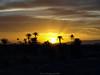Sunset in Morocco / الغروب في المغرب (Rick & Bart) Tags: غروبالشمس المغرب sunset morocco marokko maroc northafrica rickbart zonsondergang rickvink olympuse510 landscape nature valléedudadès desert dadèsgorges highatlas sky