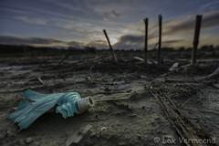 Pollution (Lex Vermeend Photo's) Tags: amelisweerd utrecht netherlands nederland nature nederlands nederlandnetherlands ngc natuur sunset sunrise zonsopkomst zonsondergang pollution vervuiling