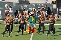 Our mascot can dance better than your mascot (C.P. Kirkie) Tags: oregon oregonducks universityoforegoncheerleading universityoforegon autzenstadium collegefootball ncaacollegefootball pac12 pac12football eugene