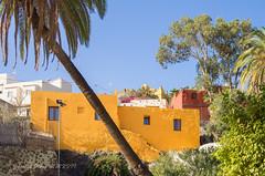 Villa de Ingenio (susodediego ) Tags: ingenio grancanaria canaryislands em10markii sigma19mmf28dn thegalaxy susodediego vividstriking contactgroups