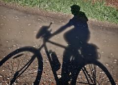 Felicitat's shadow (Markus' Sperling) Tags: bike bici ciclista cyclist sombra ombra shadow felicidad felicitat felicity rural path cami camino bycicle ciclism ciclisme ciclismo