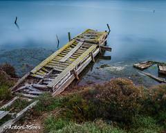 Passarela abandonada (vfr800roja) Tags: natura deltadelebre passarela