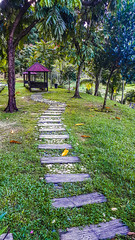 forest cottage 1 (Ahmed N Yaghi) Tags: forest cottage path steps trees green red wooden university malaya malaysia leaves fallen garden love nikon galaxy note 4 mobile samsung