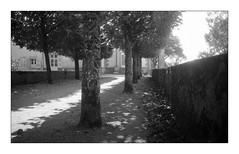 (floguill) Tags: leica iiig elmar 35cm uncoated kentmere 100iso lc29