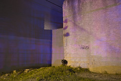Police/Wall by Alec C Miller -