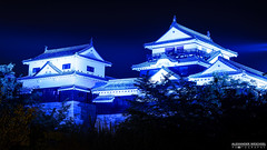 Matsuyama Castle at Night (ONLY-JAPAN-PHOTOGRAPHY) Tags: 2014 2015 2016 ancient buddhism best culture d610 green honshu japan japón japani japon japanese nature nihon nikon nippon red shintoism shinto summer tradition travel travelling view world 日本 本州 일본 matsuyama island