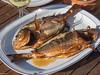 _A180077.jpg Smoked guiltheaded bream (JorunT) Tags: giltheadbream fisk 2017 røkt høst middag dorade oktober hellas