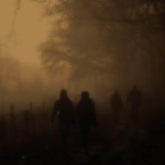 Afterglow (Frank ) Tags: glow afterglow mist misty autumn fall walk hike hiking stroll limburg frnk europe sintjoost iphone topf25 top f50 topf150 topf100