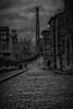 Dog Walking In Saltaire (Frodingham Photographer) Tags: morning blackwhite dogwalker urban saltaire