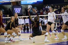UW USC-FT4I8463 (Pacific Northwest Volleyball Photography) Tags: volleyball ncaa washington usc uwhuskies seattle pac12 pac12vb