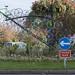 Think Bike: 'Winning Bike' sculpture, Cheltenham Spa, UK