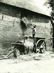 Henri Berssenbrugge straat en landleven  1900-1930 ill  Tilburg hooizolder  1901 (janwillemsen) Tags: henriberssenbrugge artphoto braband 1900