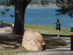 "The Avanti Plus Long and Short Course Duathlon-Lake Tinaroo • <a style=""font-size:0.8em;"" href=""http://www.flickr.com/photos/146187037@N03/36894405953/"" target=""_blank"">View on Flickr</a>"