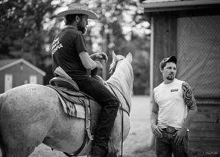 auction cowboys