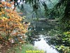 """2017-10-14      Doorn 35 Km    (13) • <a style=""""font-size:0.8em;"""" href=""""http://www.flickr.com/photos/118469228@N03/36999125994/"""" target=""""_blank"""">View on Flickr</a>"""