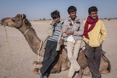 Rajasthan - Jaisalmer - Desert Safari with Camels-77