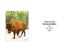 """Montana Buffalo • <a style=""""font-size:0.8em;"""" href=""""https://www.flickr.com/photos/124378531@N04/37067205644/"""" target=""""_blank"""">View on Flickr</a>"""