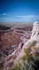 Petrified Forest (pchcruzr) Tags: arizona petrifiedforest nationalpark landscape desert petroglyphs dinosaur ancientforest