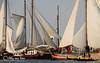 DSCF9137 (ellyvveen) Tags: enkhuizen ijsselmeer klipperrace schepen klippers klipper waterwolf zeilen zeil wind hijsen varen zuiderkerk drommedaris race wedstrijd