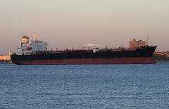 HORIZON ELECTRA in New York, USA. October 2017 (Tom Turner - NYC) Tags: horizonelectra anchorage anchored bay stapleton ship vessel water waterway channel statenisland tomturner newyork bigapple unitedstates usa nyc marine maritime pony port harbor harbour transport transportation tanker