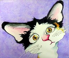 Cute cat, by hj - DSC01871 (Dona Minúcia) Tags: art painting watercolor study paper cat animal cute lovely friend illuatrtion humor fun arte pintura aquarela gato amigo buddy companheiro fofo ilustração animação drawing desenho