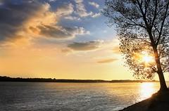 The charm of the Danube (Photogioco) Tags: danube suhaia romania sunset fiume river danuba panorama vista view landscape photo fotografia